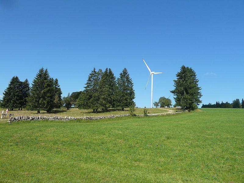Filmclips zur Windenergie